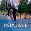 bot_skate